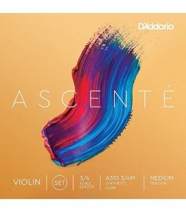 Struny do skrzypiec D'Addario Ascente A310 3/4M