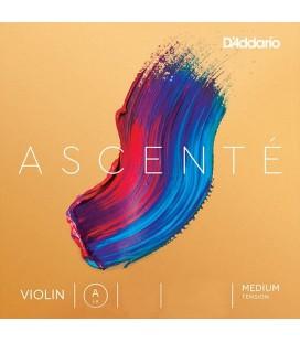 Struna A do skrzypiec D'Addario Ascente A312 4/4M