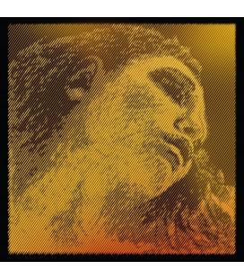 Struny do skrzypiec PIRASTRO Evah Pirazzi Gold 415921