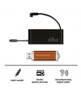 iSolo - bezprzewodowy mikrofon instrumentalny, system, interface