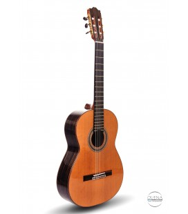 Gitara Lutnicza P.E. Malimowski 39/21