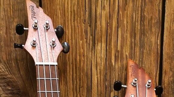 Świąteczno Noworoczna promocja na ukulele FLYCAT C10S oraz C10S